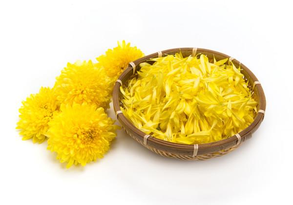 食用菊の画像