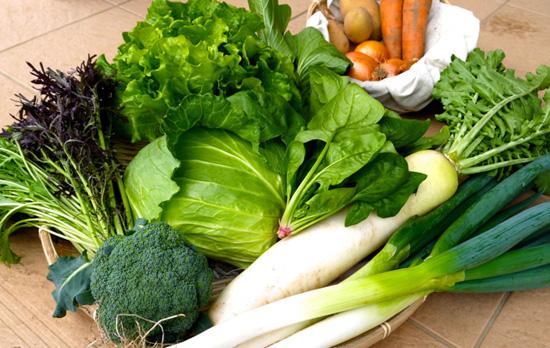 茨城の久松農園の有機栽培野菜の画像