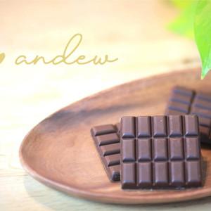 完全食チョコレート「andew(アンジュ) 」