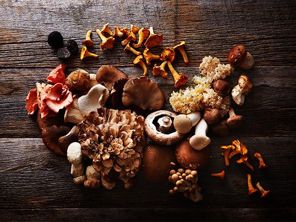 国産茸、ポルチーニ茸、トリュフ