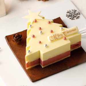 「VANILLABEANS」オンライン限定クリスマスケーキ