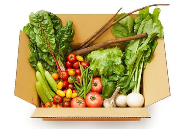 逸品揃いの野菜をセレクトした「お野菜ボックス」