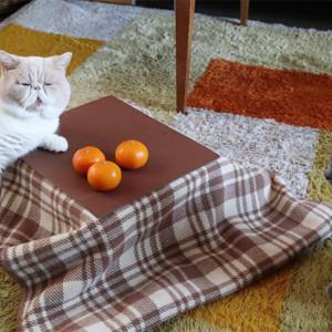 猫専用こたつ付きみかん「猫と、こたつと、思い出みかん」