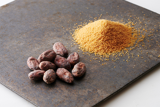 カカオ豆と有機ココナッツシュガー