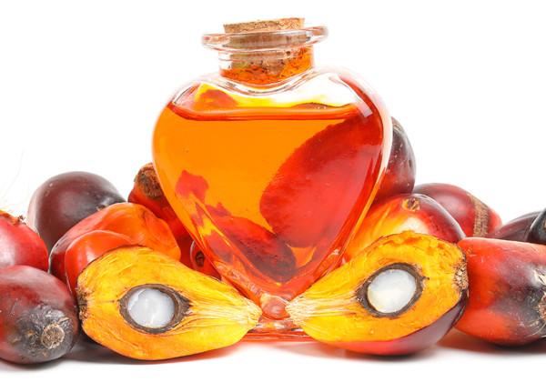 パーム油の画像