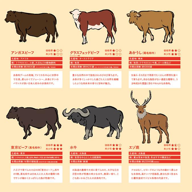 5種類の「牛」とウシ亜目の仲間「鹿」