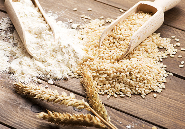 穀類・穀物