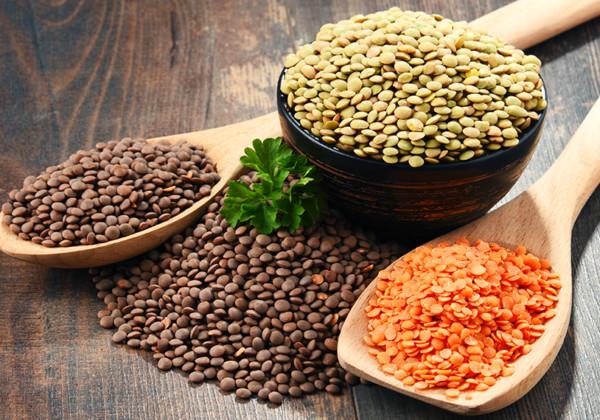 レンズ豆の画像