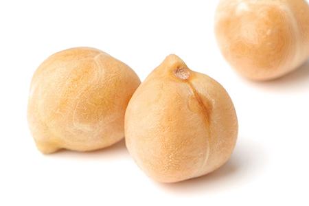ひよこ豆の突起物