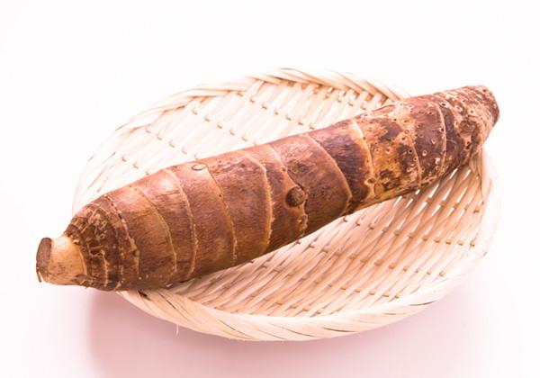 たけのこ芋の画像
