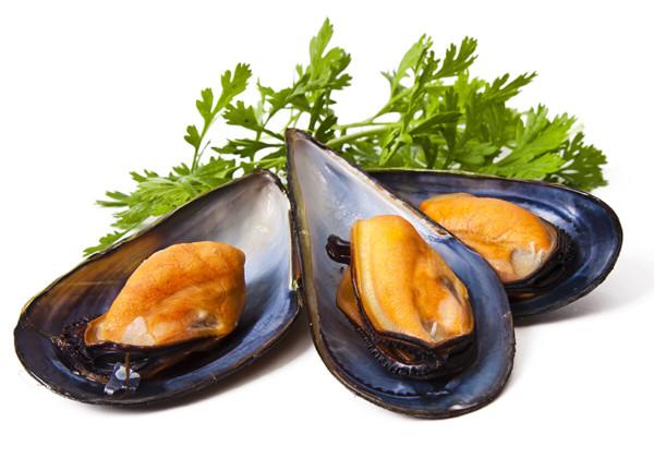 ムール貝の画像