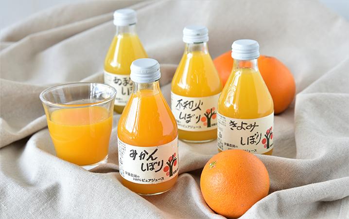 伊藤農園で扱う種類豊富なかんきつジュースの画像