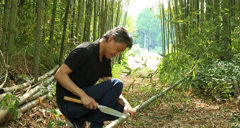 竹を切る画像