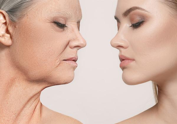 老化と抗酸化作用