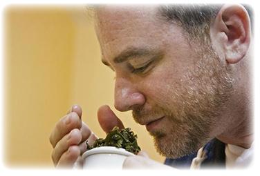 ART OF TEAのスティーブシュワルツ