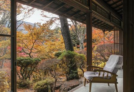 「松の間」から臨む華清園 紅葉イメージ