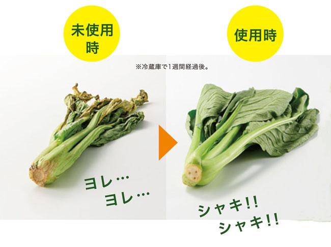 野菜の鮮度をキープ