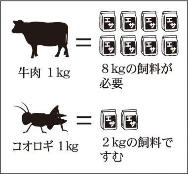 牛肉とコオロギの飼料比較